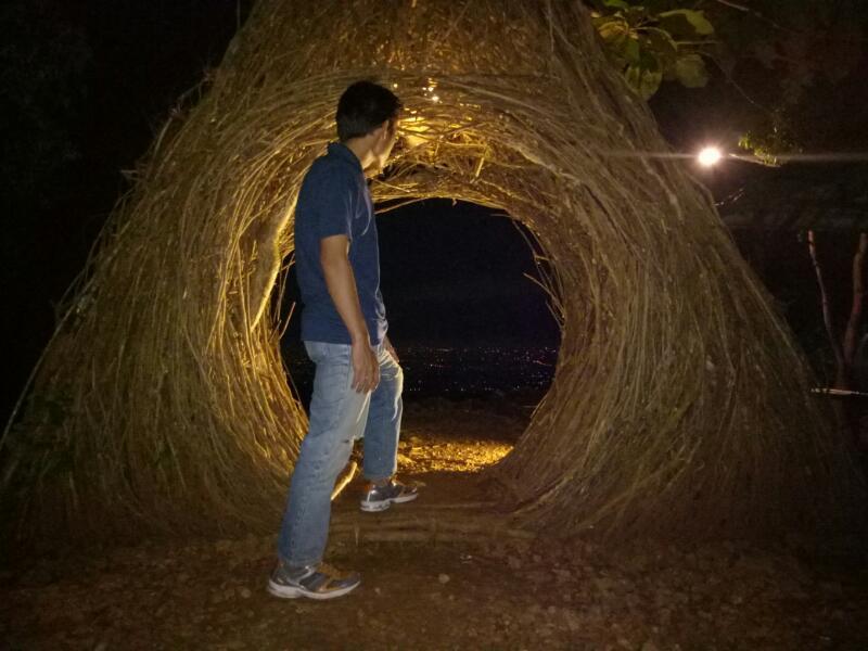 Indahnya, Hutan Pinus Pengger Malam Hari: Bikin Suasana Makin Romantis