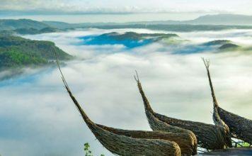 Geoforest Watu Payung Gunung Kidul, Tempat Wisata Terbaru Rekomen