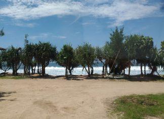 Pantai Slili Gunung Kidul: Mempesona Mengalir Dalam Hembusan Angin