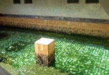 Parang Wedang Parangtritis: Pemandian Air Panas Yang Menyehatkan