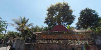 Desa Wisata Pulesari: Datang dan Nikmati Aneka Produk Olahan Salak