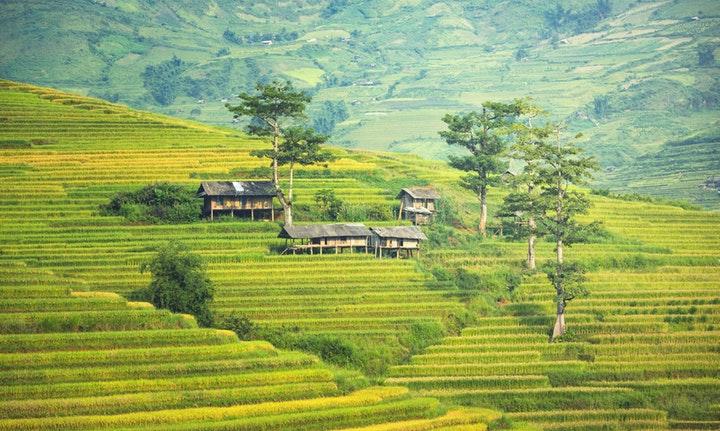 Apa itu BUMDes? Bagaimana Fungsi dan Impact-nya Terhadap Desa Kita
